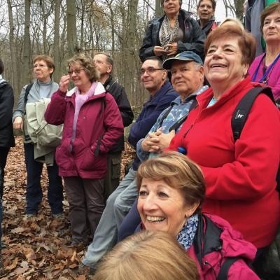 2 décembre 2015, Forêt Domaniale de Carnelle - Presles