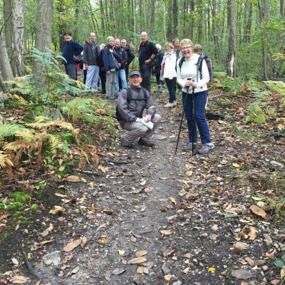 19 octobre 2016, Forêt Domaniale de Montmorency - Bouffémont