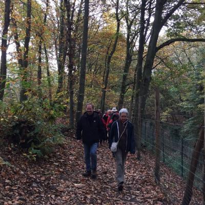 4 novembre 2016, Montigny-lès-Cormeilles